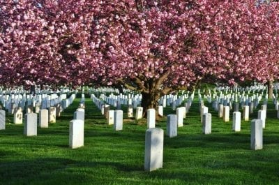 cremation services in Baltimore